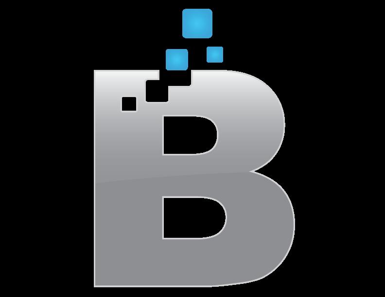 Biggids   Website Design, Development & Online Business Growth
